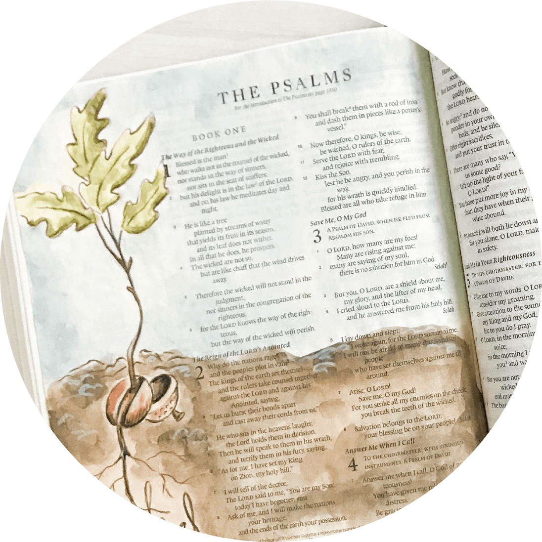 Create beautiful watercolor art in your Bible with the Bible Lettering and Art online course at amandaarneill.com