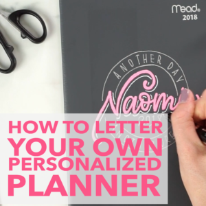 Learn how to customize your planner with this free video tutorial and blog post from amandaarneill.com