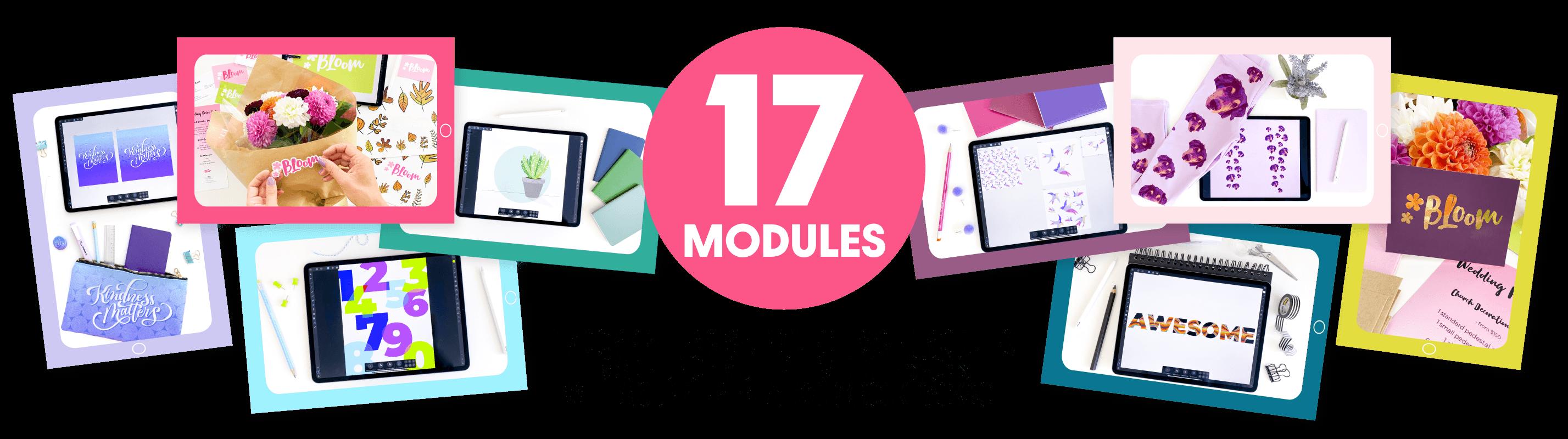 iPad-Vectors-Made-Easy-Modules-Photo